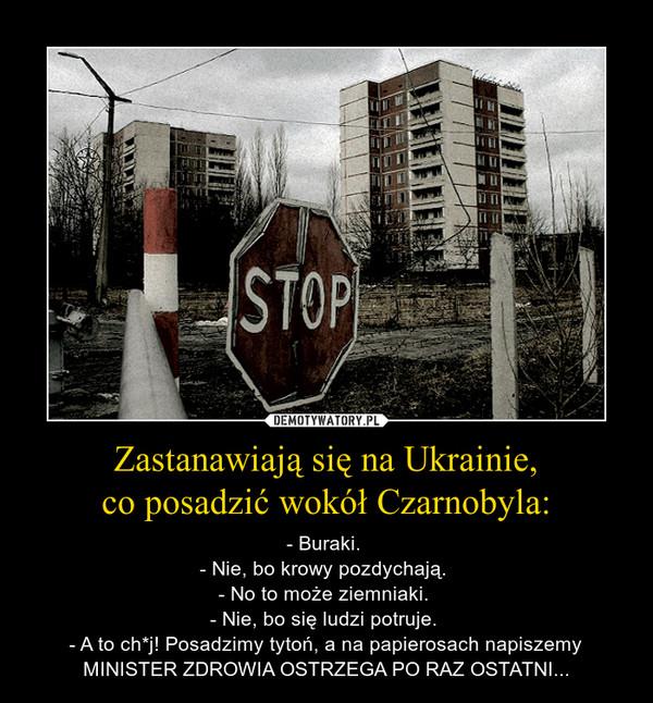 Zastanawiają się na Ukrainie,co posadzić wokół Czarnobyla: – - Buraki. - Nie, bo krowy pozdychają. - No to może ziemniaki. - Nie, bo się ludzi potruje. - A to ch*j! Posadzimy tytoń, a na papierosach napiszemy MINISTER ZDROWIA OSTRZEGA PO RAZ OSTATNI...