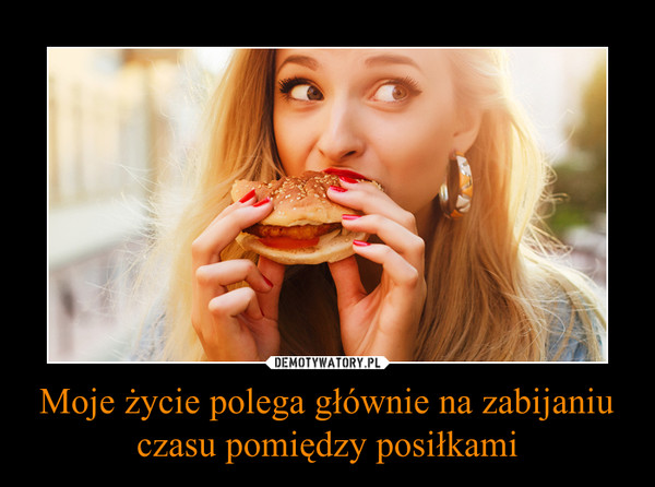 Moje życie polega głównie na zabijaniu czasu pomiędzy posiłkami –