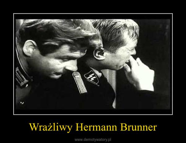 Wrażliwy Hermann Brunner –