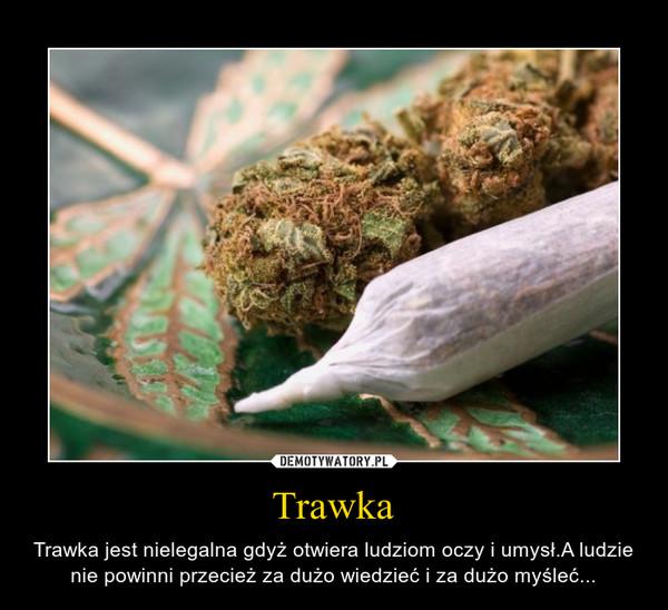 Trawka – Trawka jest nielegalna gdyż otwiera ludziom oczy i umysł.A ludzie nie powinni przecież za dużo wiedzieć i za dużo myśleć...