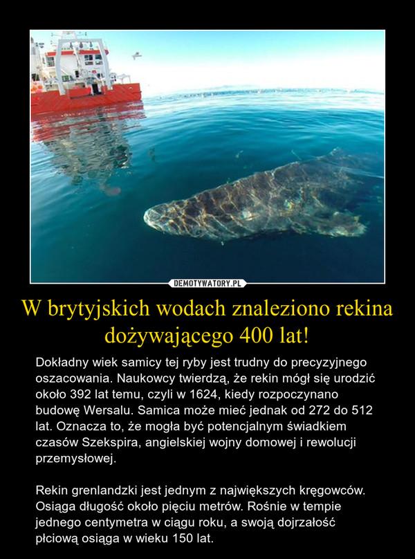 W brytyjskich wodach znaleziono rekina dożywającego 400 lat! – Dokładny wiek samicy tej ryby jest trudny do precyzyjnego oszacowania. Naukowcy twierdzą, że rekin mógł się urodzić około 392 lat temu, czyli w 1624, kiedy rozpoczynano budowę Wersalu. Samica może mieć jednak od 272 do 512 lat. Oznacza to, że mogła być potencjalnym świadkiem czasów Szekspira, angielskiej wojny domowej i rewolucji przemysłowej.Rekin grenlandzki jest jednym z największych kręgowców. Osiąga długość około pięciu metrów. Rośnie w tempie jednego centymetra w ciągu roku, a swoją dojrzałość płciową osiąga w wieku 150 lat.