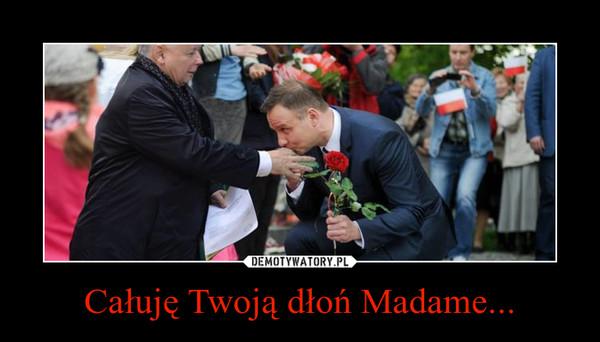 Całuję Twoją dłoń Madame... –