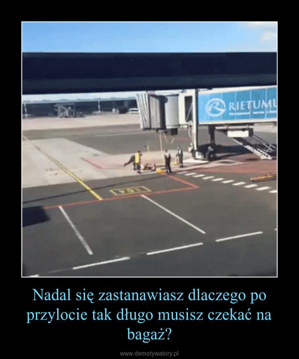 Nadal się zastanawiasz dlaczego po przylocie tak długo musisz czekać na bagaż? –
