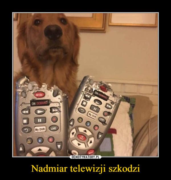 Nadmiar telewizji szkodzi –