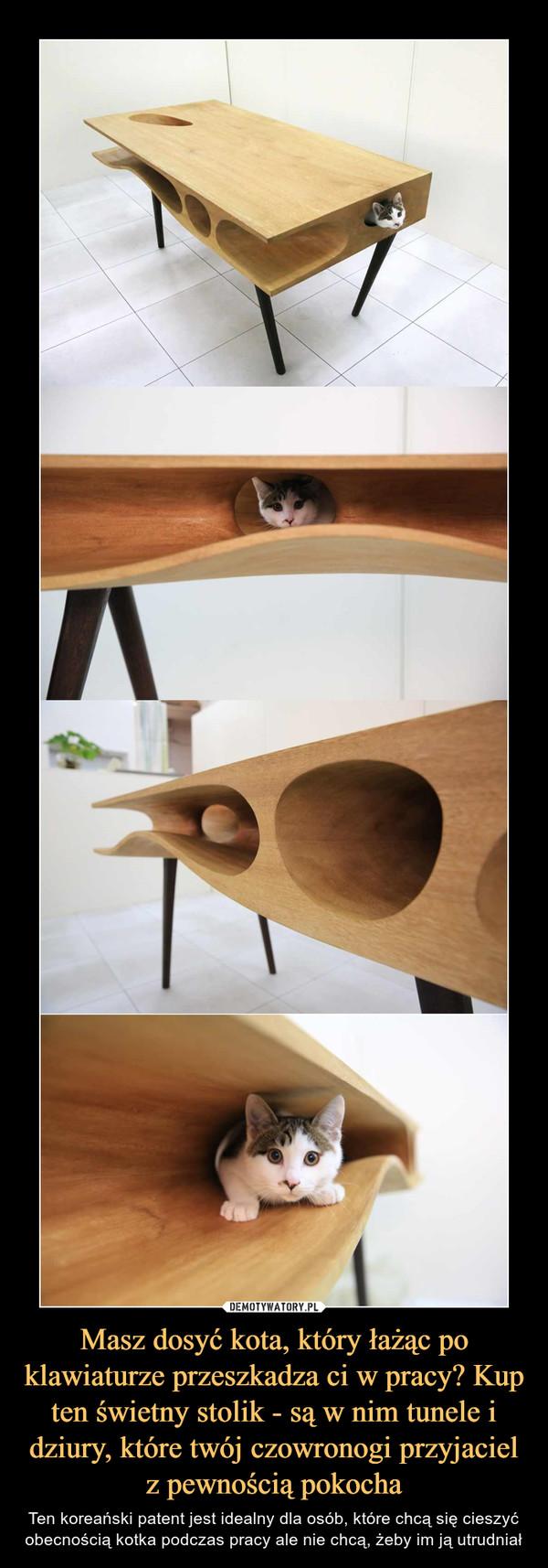 Masz dosyć kota, który łażąc po klawiaturze przeszkadza ci w pracy? Kup ten świetny stolik - są w nim tunele i dziury, które twój czowronogi przyjaciel z pewnością pokocha – Ten koreański patent jest idealny dla osób, które chcą się cieszyć obecnością kotka podczas pracy ale nie chcą, żeby im ją utrudniał