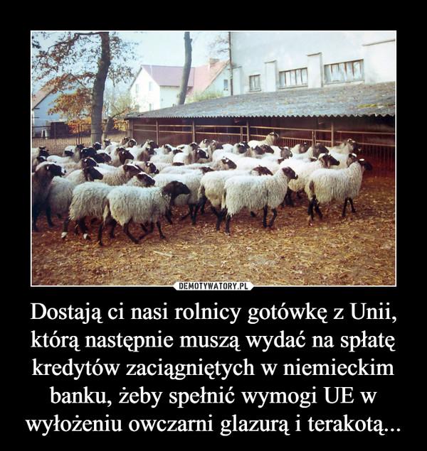 Dostają ci nasi rolnicy gotówkę z Unii, którą następnie muszą wydać na spłatę kredytów zaciągniętych w niemieckim banku, żeby spełnić wymogi UE w wyłożeniu owczarni glazurą i terakotą... –