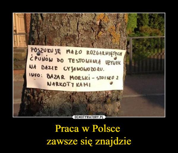 Praca w Polsce zawsze się znajdzie –  POSZUKUJĘ MAŁO ROZGARNIĘTYCH ĆPUNÓW DO TESTOWANIA UŻYWEK NA BAZIE CYJANOWODORUINFO: BAZAR MORSKI - STOISKO Z NARKOTYKAMI
