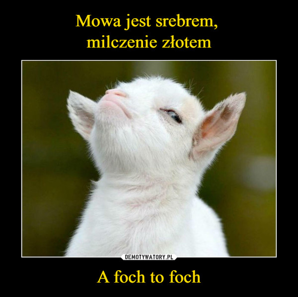 A foch to foch –