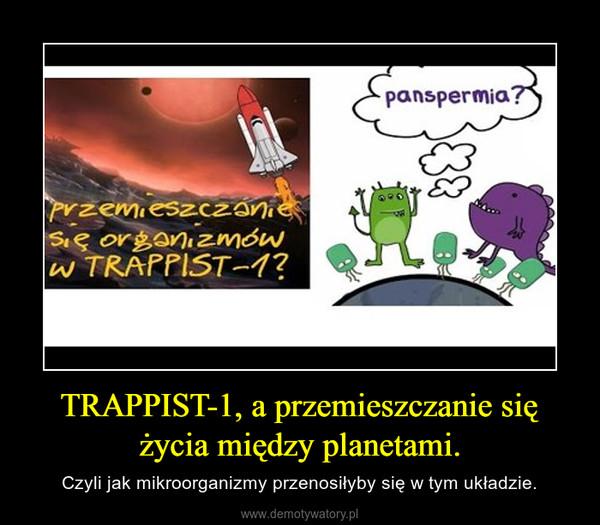 TRAPPIST-1, a przemieszczanie się życia między planetami. – Czyli jak mikroorganizmy przenosiłyby się w tym układzie.