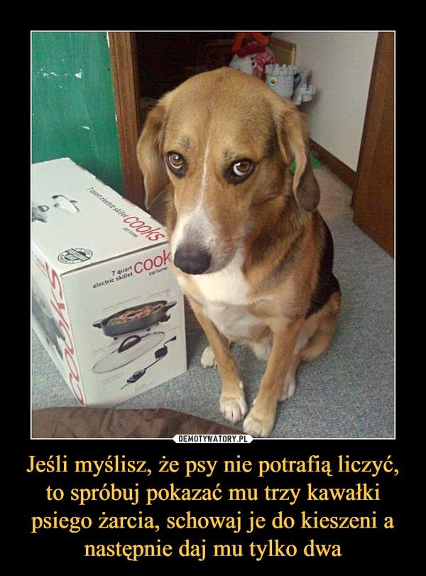Jeśli myślisz, że psy nie potrafią liczyć, to spróbuj pokazać mu trzy kawałki psiego żarcia, schowaj je do kieszeni a następnie daj mu tylko dwa –
