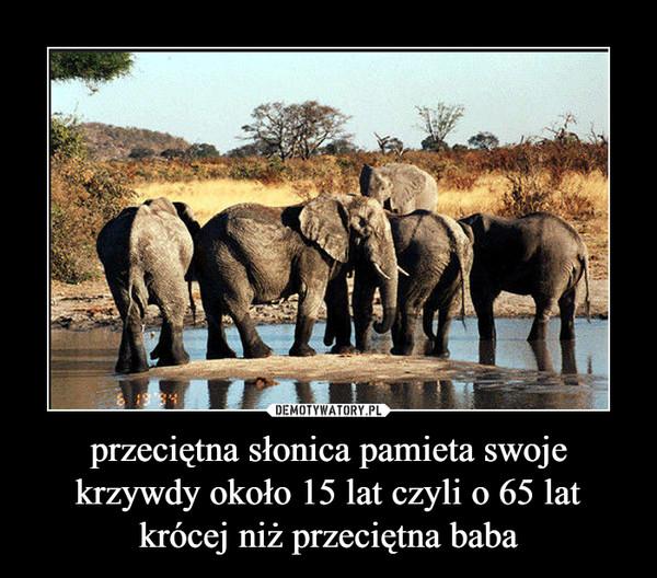 przeciętna słonica pamieta swoje krzywdy około 15 lat czyli o 65 lat krócej niż przeciętna baba –