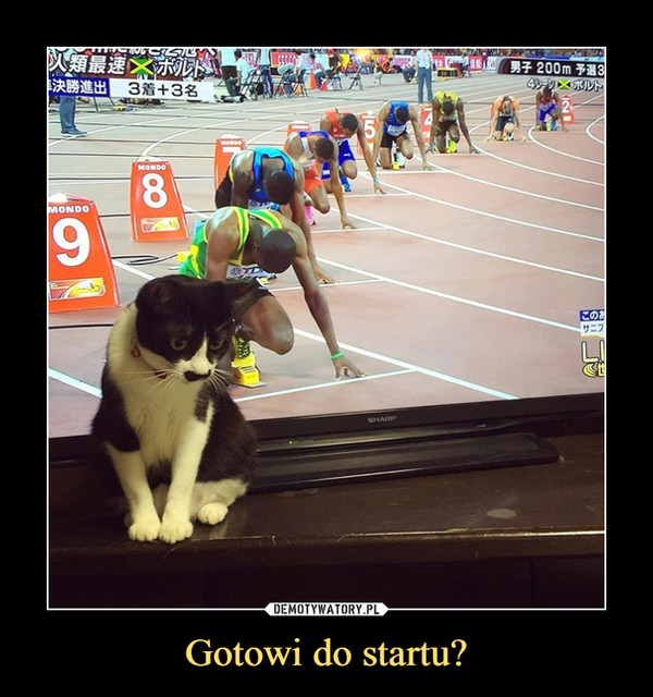 Gotowi do startu? –