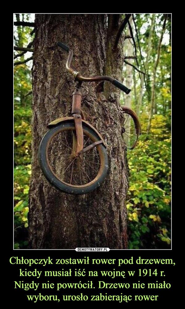 Chłopczyk zostawił rower pod drzewem, kiedy musiał iść na wojnę w 1914 r. Nigdy nie powrócił. Drzewo nie miało wyboru, urosło zabierając rower –
