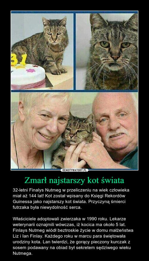 Zmarł najstarszy kot świata