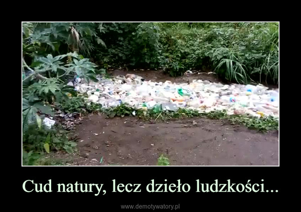 Cud natury, lecz dzieło ludzkości... –