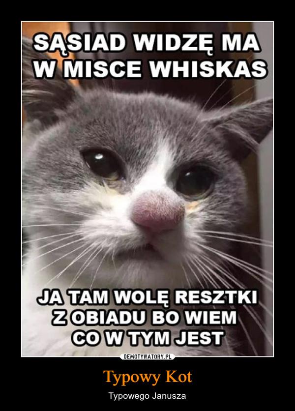 Typowy Kot – Typowego Janusza