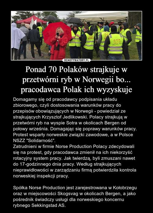 Ponad 70 Polaków strajkuje w przetwórni ryb w Norwegii bo... pracodawca Polak ich wyzyskuje
