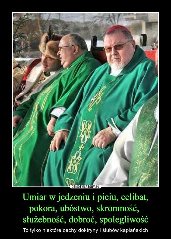 Umiar w jedzeniu i piciu, celibat, pokora, ubóstwo, skromność, służebność, dobroć, spolegliwość – To tylko niektóre cechy doktryny i ślubów kapłańskich