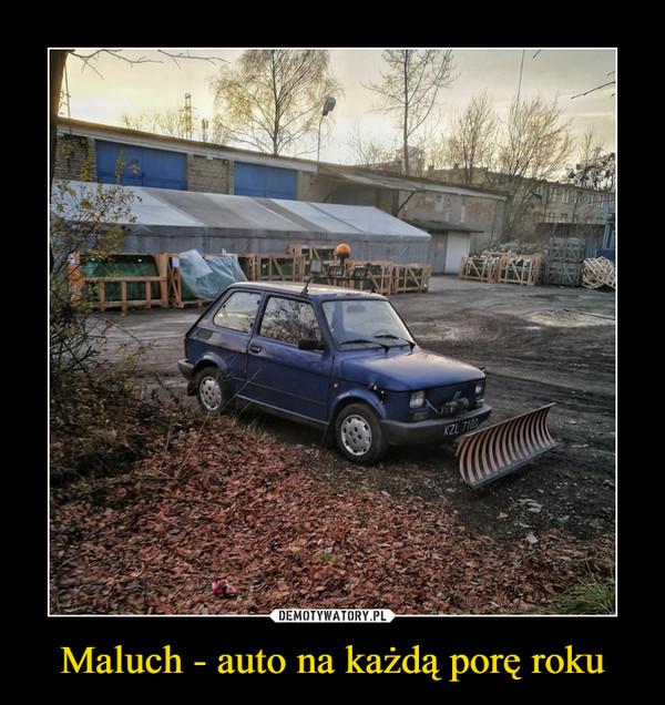 Maluch - auto na każdą porę roku –