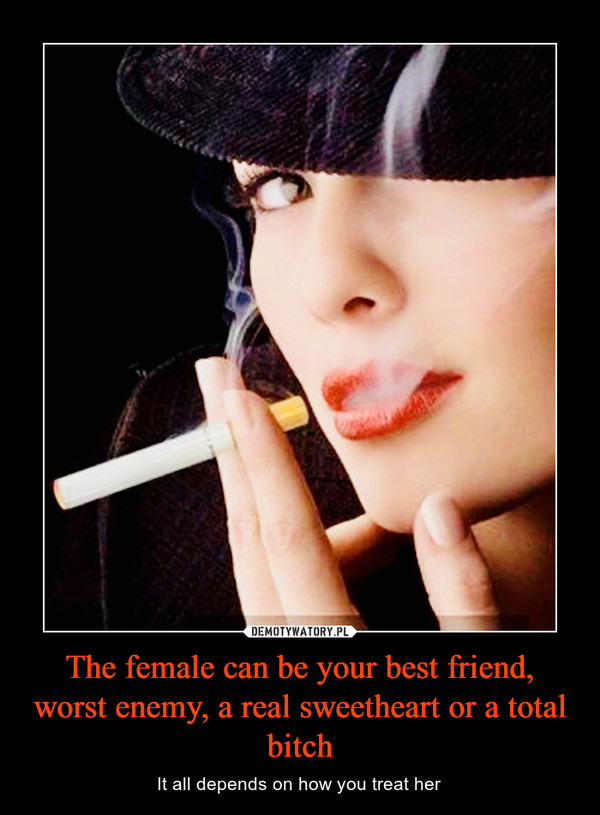 The female can be your best friend, worst enemy, a real sweetheart or a total bitch – It all depends on how you treat her
