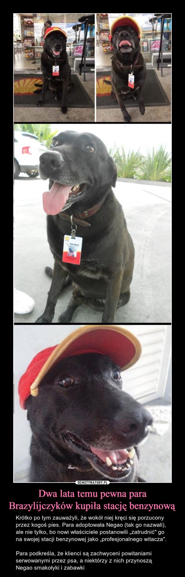 """Dwa lata temu pewna para Brazylijczyków kupiła stację benzynową – Krótko po tym zauważyli, że wokół niej kręci się porzucony przez kogoś pies. Para adoptowała Negao (tak go nazwali), ale nie tylko, bo nowi właściciele postanowili """"zatrudnić"""" go na swojej stacji benzynowej jako """"profesjonalnego witacza"""".Para podkreśla, że klienci są zachwyceni powitaniami serwowanymi przez psa, a niektórzy z nich przynoszą Negao smakołyki i zabawki"""