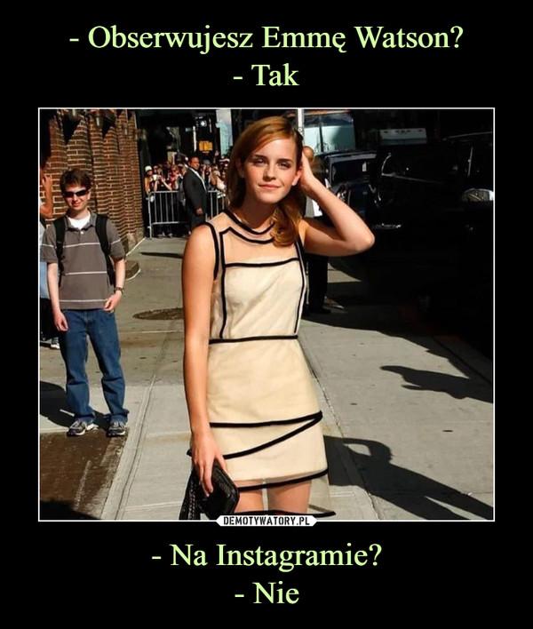 - Na Instagramie?- Nie –