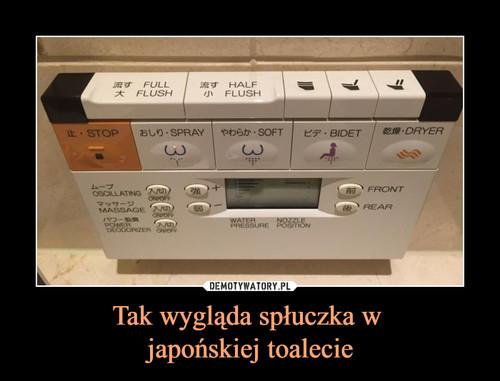 Tak wygląda spłuczka w  japońskiej toalecie