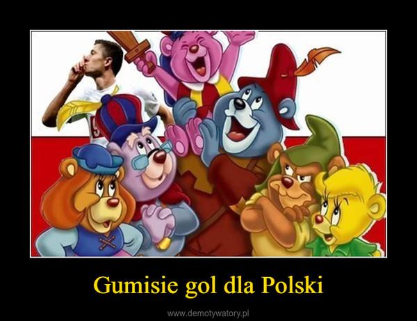 Gumisie gol dla Polski –