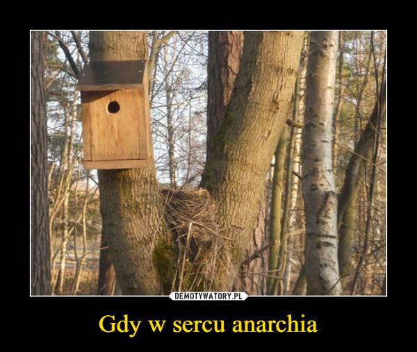 Gdy w sercu anarchia –