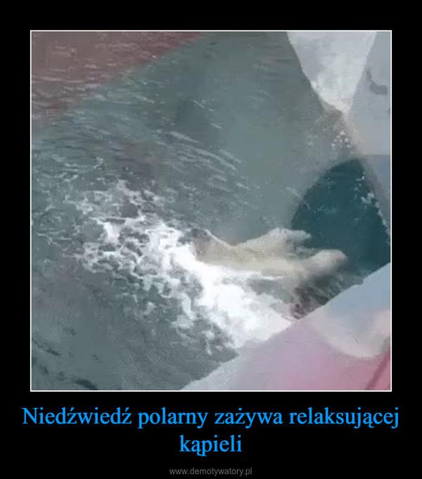 Niedźwiedź polarny zażywa relaksującej kąpieli –