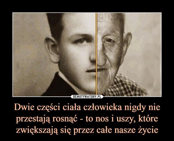 Dwie części ciała człowieka nigdy nie przestają rosnąć - to nos i uszy, które zwiększają się przez całe nasze życie –