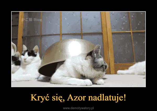 Kryć się, Azor nadlatuje! –