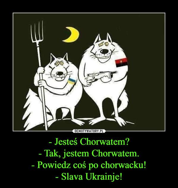- Jesteś Chorwatem?- Tak, jestem Chorwatem.- Powiedz coś po chorwacku!- Slava Ukrainje! –