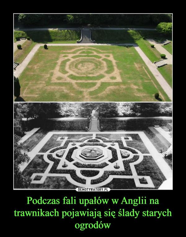 Podczas fali upałów w Anglii na trawnikach pojawiają się ślady starych ogrodów –
