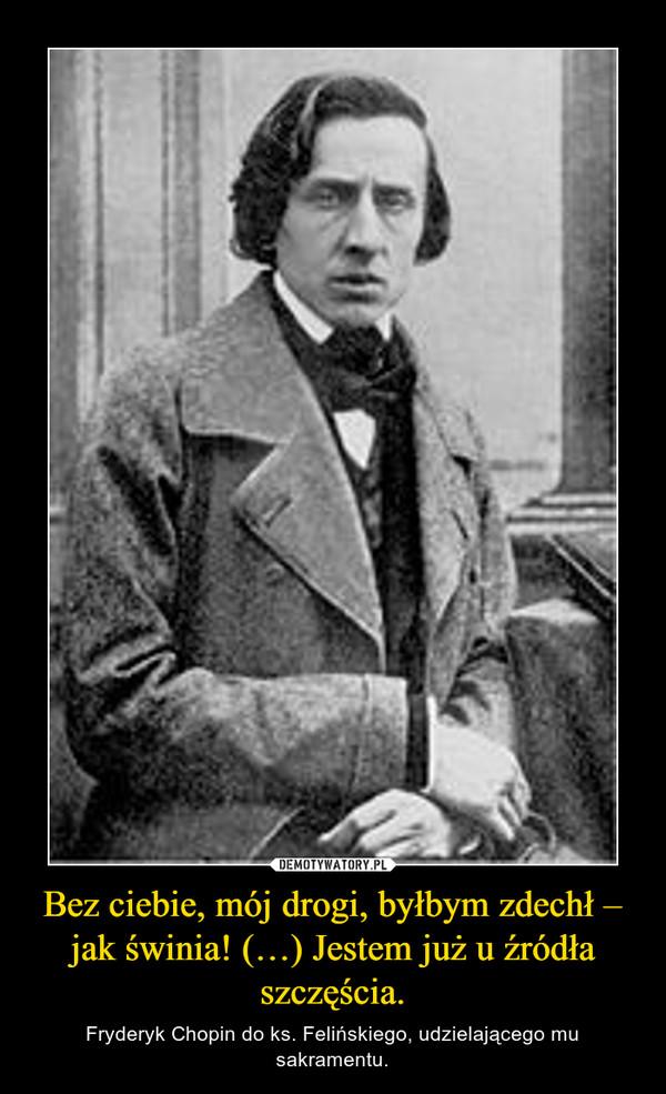 Bez ciebie, mój drogi, byłbym zdechł – jak świnia! (…) Jestem już u źródła szczęścia. – Fryderyk Chopin do ks. Felińskiego, udzielającego mu sakramentu.