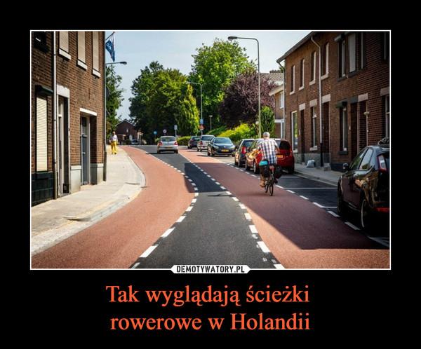 Tak wyglądają ścieżki rowerowe w Holandii –
