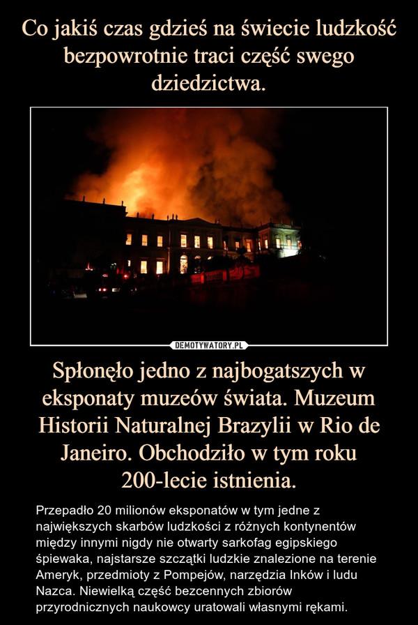 Co jakiś czas gdzieś na świecie ludzkość bezpowrotnie traci część swego dziedzictwa. Spłonęło jedno z najbogatszych w eksponaty muzeów świata. Muzeum Historii Naturalnej Brazylii w Rio de Janeiro. Obchodziło w tym roku 200-lecie istnienia.