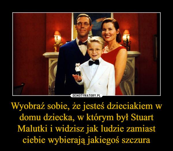 Wyobraź sobie, że jesteś dzieciakiem w domu dziecka, w którym był Stuart Malutki i widzisz jak ludzie zamiast ciebie wybierają jakiegoś szczura –