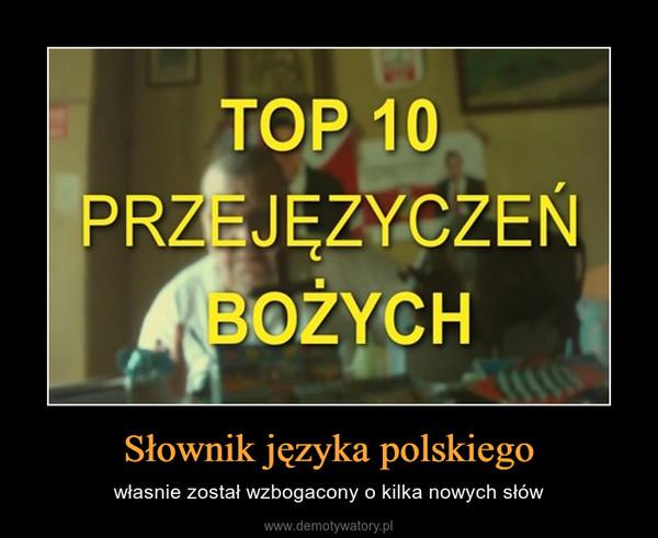 Słownik języka polskiego – własnie został wzbogacony o kilka nowych słów