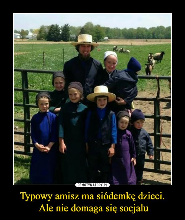 Typowy amisz ma siódemkę dzieci. Ale nie domaga się socjalu –