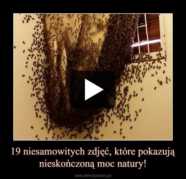 19 niesamowitych zdjęć, które pokazują nieskończoną moc natury! –