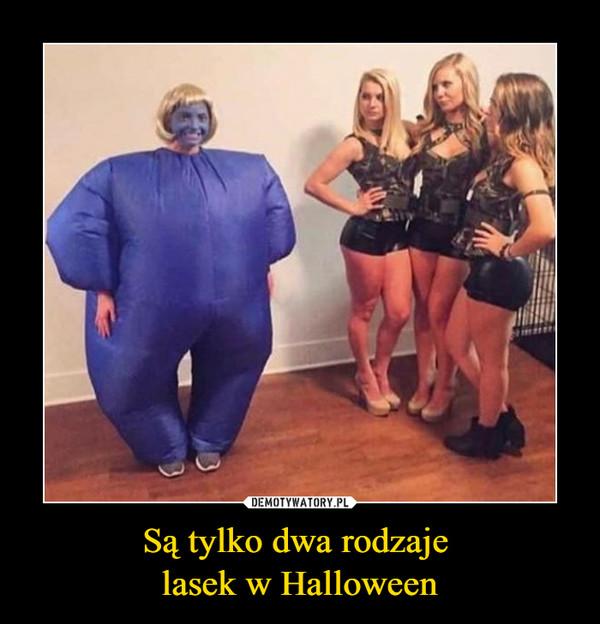 Są tylko dwa rodzaje lasek w Halloween –