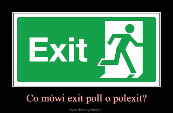 Co mówi exit poll o polexit? –