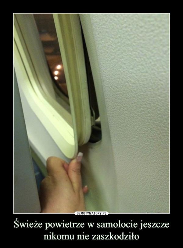 Świeże powietrze w samolocie jeszcze nikomu nie zaszkodziło –