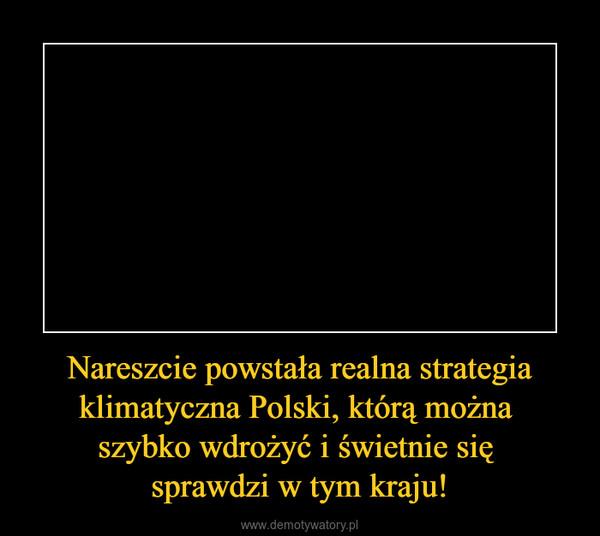 Nareszcie powstała realna strategia klimatyczna Polski, którą można szybko wdrożyć i świetnie się sprawdzi w tym kraju! –
