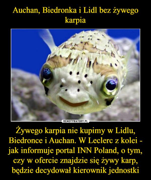 Żywego karpia nie kupimy w Lidlu, Biedronce i Auchan. W Leclerc z kolei - jak informuje portal INN Poland, o tym, czy w ofercie znajdzie się żywy karp, będzie decydował kierownik jednostki –