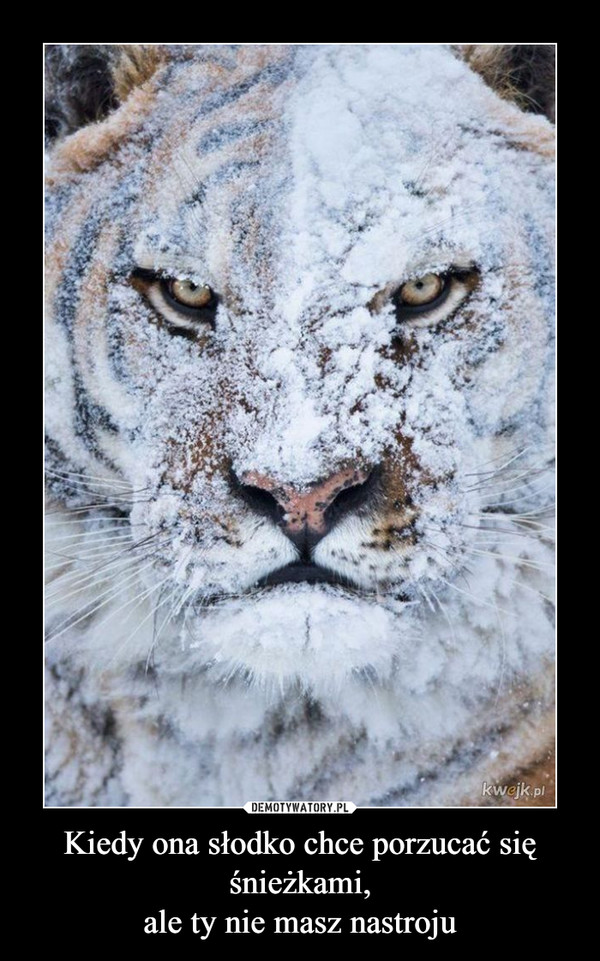 Kiedy ona słodko chce porzucać się śnieżkami,ale ty nie masz nastroju –