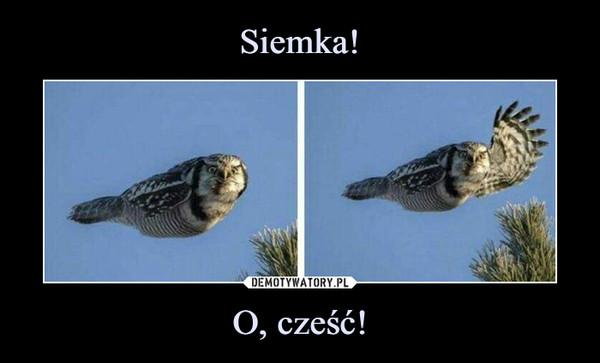 O, cześć! –