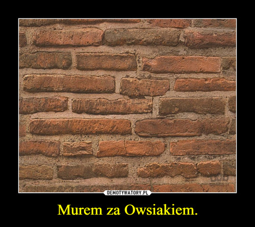 Murem za Owsiakiem.