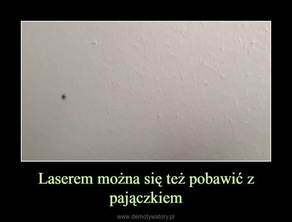 Laserem można się też pobawić z pajączkiem –